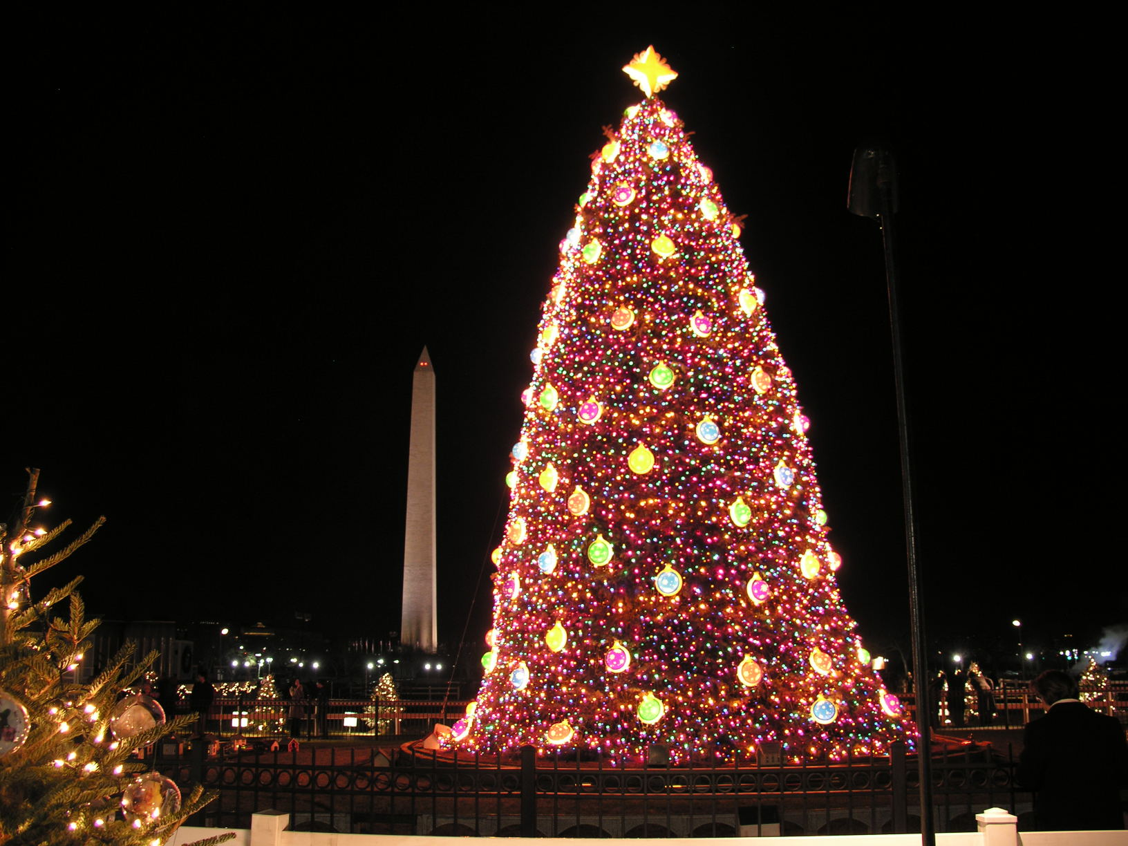 Christmas Trees All Over The World